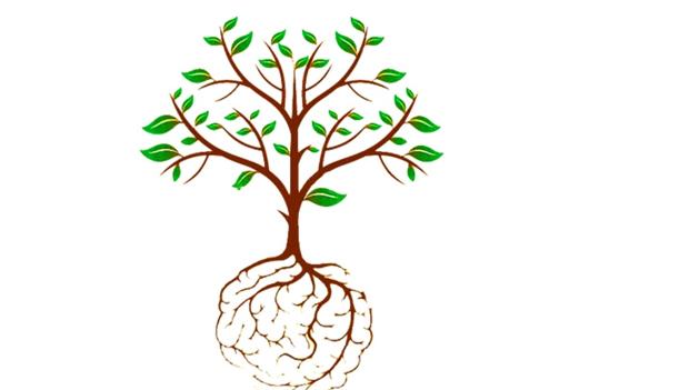 Exploring Green Behaviours Through Social Psychology